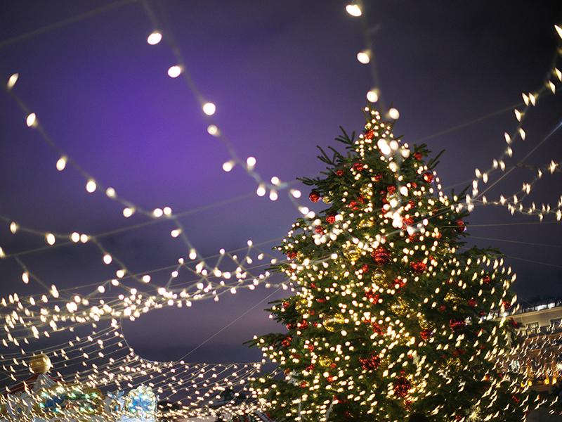 JULOG NYTTÅR PÅ ISLAND_Feir jul på Island_Opplev vakre julelys i Reykjavik © Din Islandsreise