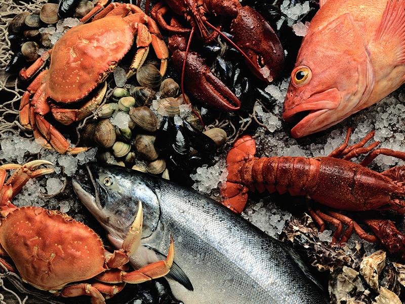 WEEKENDTUR PÅ ISLAND MED GASTRANOMISKE OPPLEVELSER_God mat og matopplevelser på Island_Fersk sjømat © Din Islandsreise